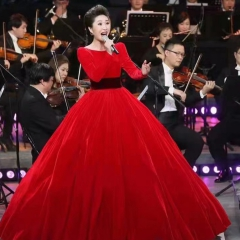 主持人歌唱表演赛礼服随身礼服W2010160126-6 图片色 均码