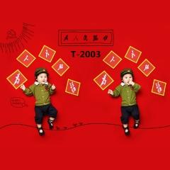 儿童艺术写真服童装时尚风格宝宝服装W906GZTHT2003 如图 均码